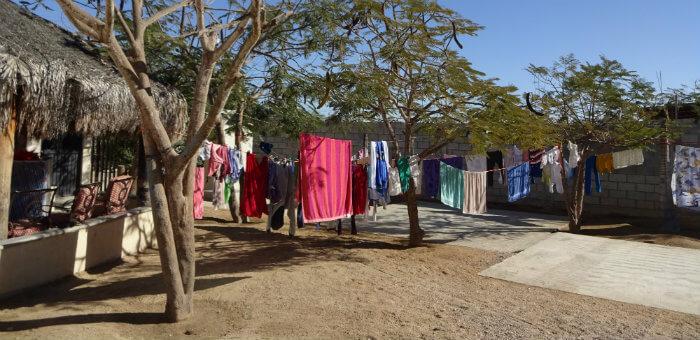 Kalos Financial Atlanta Kalos on a Mission Cabo San Lucas 2017 clothesline trees